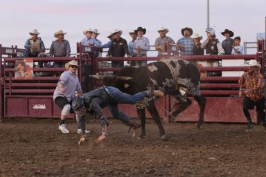 Merced County Fair brings community together for tradition